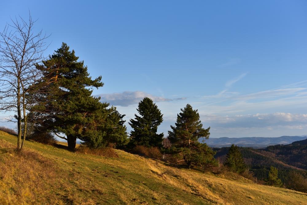 Jarní březnové kopce nad námi
